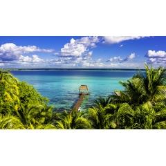 Voyage autotour au Mexique - CANCUN – PUERTO MORELOS – TULUM – BACALAR – CALAKMUL – PALENQUE – CAMPECHE - UXMAL – IZAMAL – HOLBOX – CANCUN  Ce voyage autotour très complet vous fera découvrir aussi bien des merveilles de la nature que de remarquables sites mayas, en passant par des plages de rêve. Ce programme met également l'accent sur l'originalité et les rencontres avec une nuit dans une communauté du Yucatan et une autre dans la jungle du Chiapas. Le reste du temps, vous dormirez dans des hôtels de charme confortables.