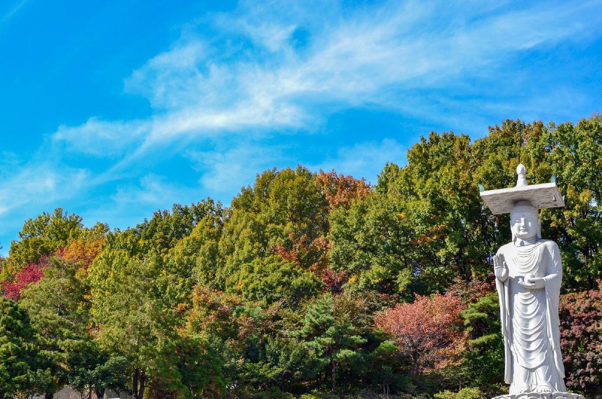 Temple Bogeunsa Séoul en Corée du Sud