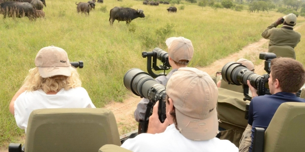 groupe de touristes en safari qui prennent des photos