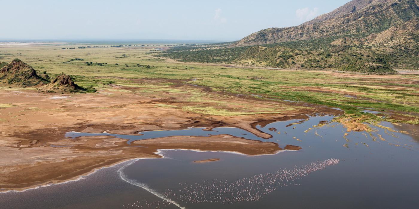 landscape safari