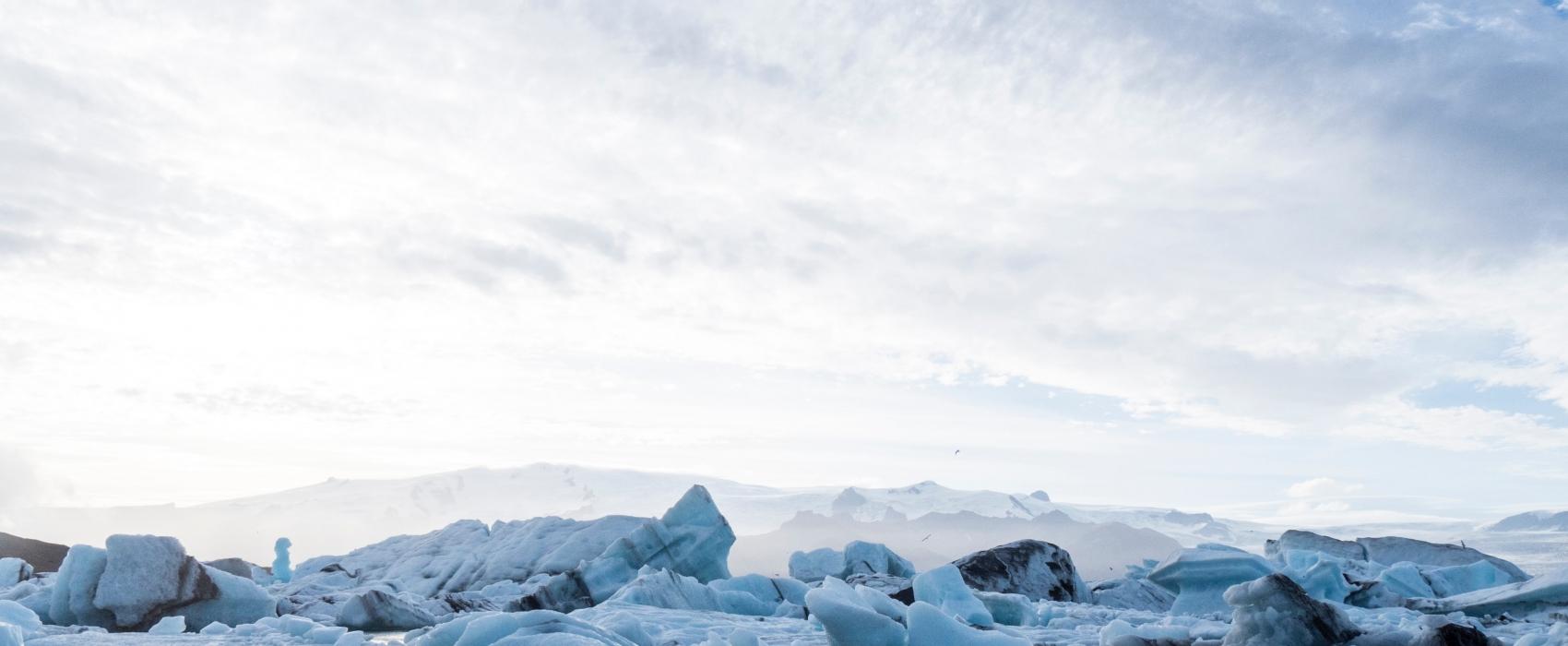 arctique glace